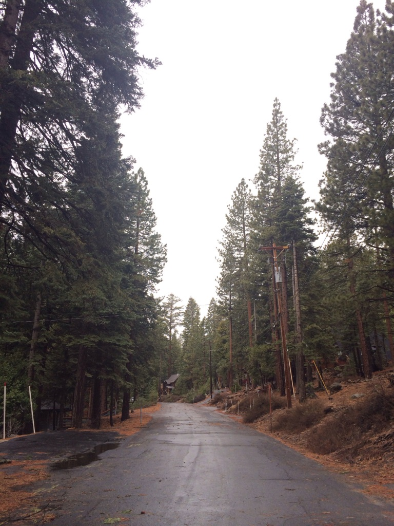 lake tahoe run- street